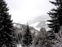 Vosges 6