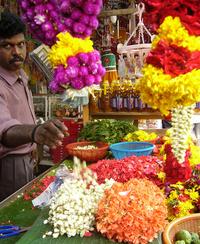 Singapore Flower Seller
