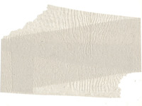 Toilet Paper Texture