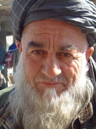 Bearded Afghan closeup