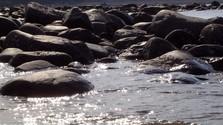 irish coast line