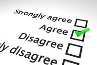 Agreement survey scale 2