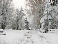 Polish winter 15