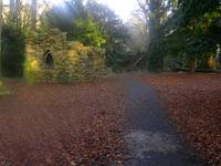 Bushi Park, Dublin