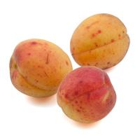 organic apricots 2