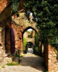 Ruins of Brederode
