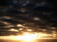 Sunrise Stock