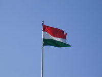 raunchy hungarian flag
