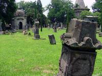 Bethlem Cemetery Series 7