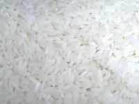 Rice! 1