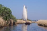 Norfolk Broads Sailing 3