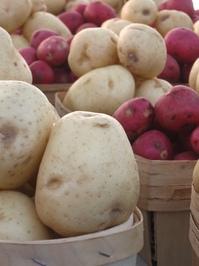 Fresh Potatoes for Sale! 5