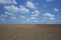 Land and sky