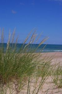 Indiana Sand Dunes 1