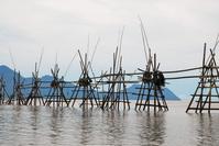Fishing Wall