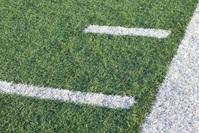 Football Field 1