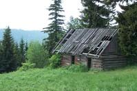 OLD Shepherd house