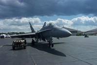 Hornet Under Stormy Skies