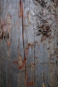 Tarred wood texture