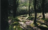 Scotland 2002