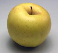 Golden Delicious Apple 1