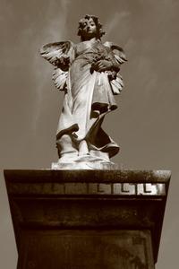 Angelic Mercy