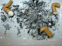 dead cigarettes