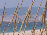 Beach at Figuera
