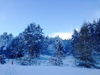 Winter in Poland 3