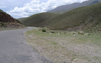Road in Salta, Argentina