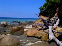 Island Views 2