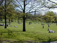 Spring at Greenwick