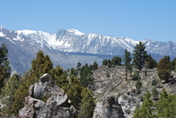 Calfornian Mountain range