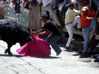Facing the bull 4