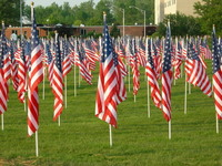 Healing Field Flags 5