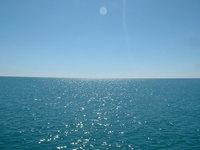 Sea Shots 1