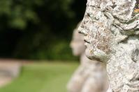 statue and lichen profile