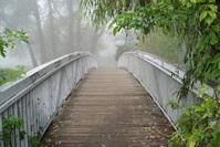 Romantic bridge in the fog