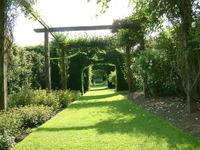 The Rose Garden 1