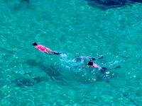 Snorkeling Pair