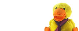 Quack-in-Tie 1