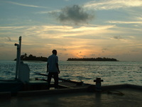 Dohni Worker at Sunset