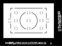 Digital Camera Display