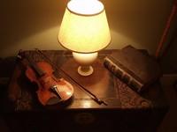 Violin in a Golden Glow