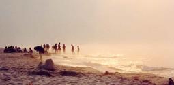 Polish shore
