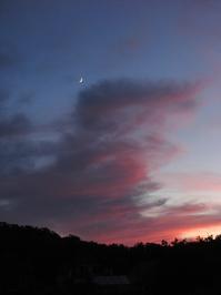 purple clouds 3