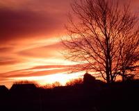 Scottish Dawn 1