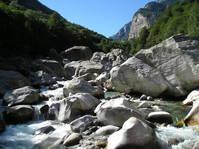 Bergbach - Creek