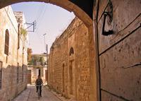 hama alley