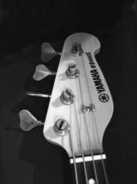 Electric Bass 3